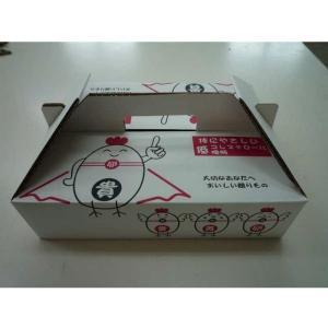 【九州産特選地卵】貴黄卵30個セット(Mサイズ)【卵の王様・貴黄卵】|qtsuhanshop|04