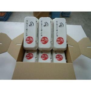 【九州産特選地卵】貴黄卵60個セット(Mサイズ)【卵の王様・貴黄卵】|qtsuhanshop|03