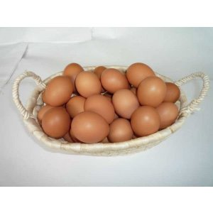 【九州産特選地卵】貴黄卵80個セット(Lサイズ)【卵の王様・貴黄卵】 qtsuhanshop 02