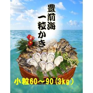 【送料無料】【福岡県産】豊前海一粒かき 小粒/60〜90個 3kg ※3月15日が最終発送日となります。|qtsuhanshop