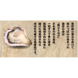 【送料無料】【福岡県産】豊前海一粒かき 中粒/45〜60個 3kg ※3月20日が最終発送日となります。|qtsuhanshop|02