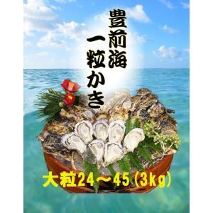 【送料無料】【福岡県産】豊前海一粒かき 大粒/24〜45個 3kg ※3月15日が最終発送日となります。 qtsuhanshop