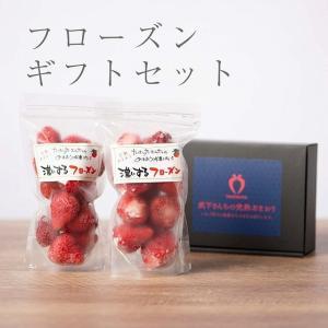 【送料無料】濃いするフローズンセット(2袋)【楽農ファームたけした】|qtsuhanshop