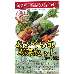 福岡県あさくらのとれたて旬野菜セット【10点〜13点】【季節野菜の詰め合わせ】|qtsuhanshop