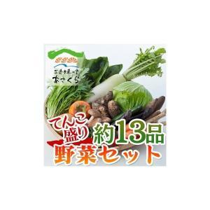 【三連水車の里あさくら】あさくらの旬の野菜てんこ盛りセット 野菜約13品|qtsuhanshop
