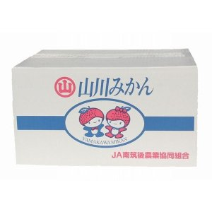【送料無料】山川みかん缶詰 5号缶×24個入り|qtsuhanshop|02