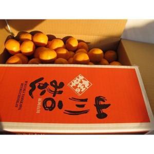 【送料無料】山川産 一口みかん(5kg)&フリーサイズみかん(5kg)|qtsuhanshop|02