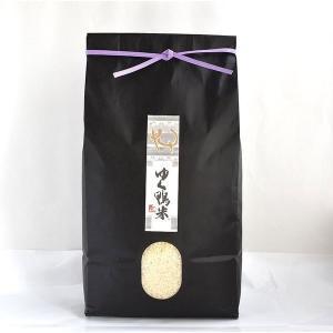 ゆく鴨米(元気つくし3kg×1袋) qtsuhanshop