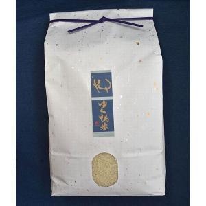 ゆく鴨米(元気つくし10kg×1袋) qtsuhanshop