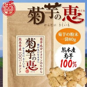 【送料無料】【熊本県産】菊芋の恵 ツナギフーズ 無農薬 無添加 きくいも 粉末|qtsuhanshop