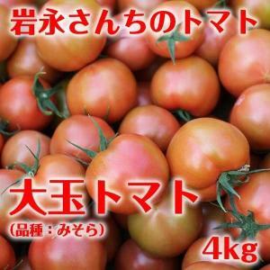 【送料無料】岩永さんちのとまと 大玉トマト(品種:みそら) 20玉〜24玉 4kg【産地直送】|qtsuhanshop