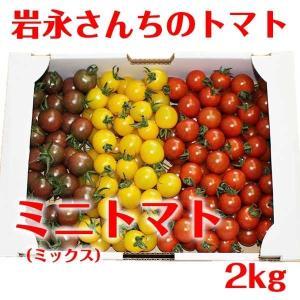 【送料無料】岩永さんちのとまと  ミニトマト ミックス 2kg【産地直送】|qtsuhanshop