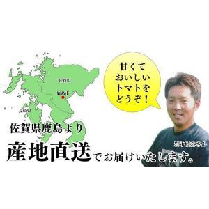 【送料無料】岩永さんちのとまと  ミニトマト ミックス 2kg【産地直送】|qtsuhanshop|03