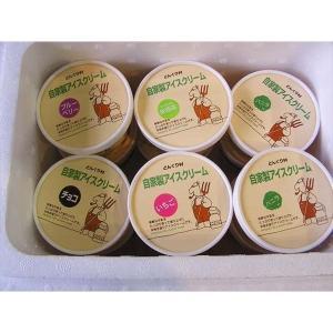 【低温殺菌牛乳】【佐賀県産】どんぐり村の自家製アイスクリーム12個セット【クール配送】|qtsuhanshop