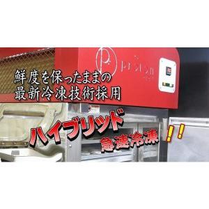 炊き込みご飯の素 真鯛昆布〆、鯛めしと炊き込みご飯のセット 本格的な鯛料理店の味をご家庭でご賞味下さい。|qtsuhanshop|05