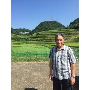 米 コシヒカリ お米 (30年産) 浜野浦棚田こしひかり 5kg|qtsuhanshop|02