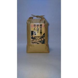 米 コシヒカリ お米 (30年産) 浜野浦棚田こしひかり 5kg|qtsuhanshop|05