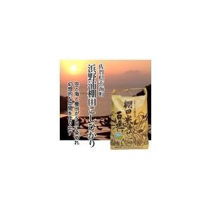 米 コシヒカリ お米 (30年産新米) 浜野浦棚田こしひかり 10kg|qtsuhanshop