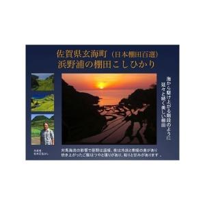 米 コシヒカリ お米 (30年産) 浜野浦棚田こしひかり 3kg|qtsuhanshop|04