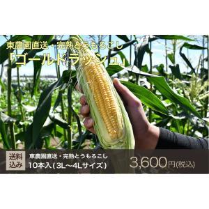 【予約販売】6月中旬出荷・完熟とうもろこし(ゴールドラッシュ)3L〜4L・1箱10本入(送料込)|qu-shop