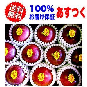 (JAふくおか)  パッションフルーツ 大玉 約1kg 化粧箱入り(8玉〜12玉) 果物 あすつく 送料無料 100%お届け保証