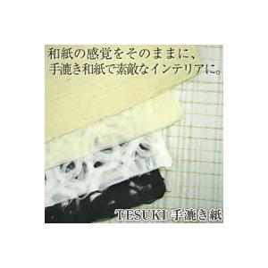 ★TESUKI 手漉き紙TE10 2枚組 格子模様★|queen-shop
