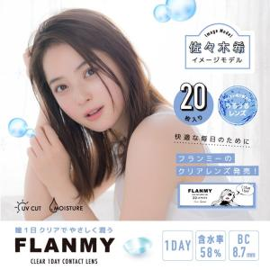 フランミー クリアワンデー FLANMY CLEAR 1DAY(1箱20枚入り)( 送料無料 クリアレンズ ソフトコンタクトレンズ コンタクトレンズ )|queeneyes