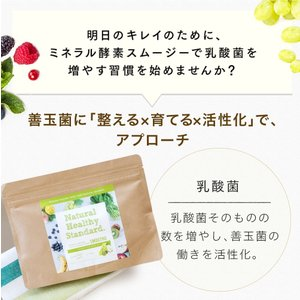 Natural Healthy Standard ミネラル酵素スムージー 乳酸菌ベリーヨーグルト味/グリーンフルーティー風味|queensshop|06