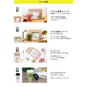 Natural Healthy Standard ダイエット応援セット|queensshop|03