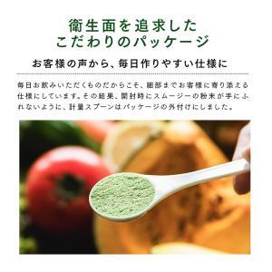 Natural Healthy Standard ミネラル酵素スムージー|queensshop|13