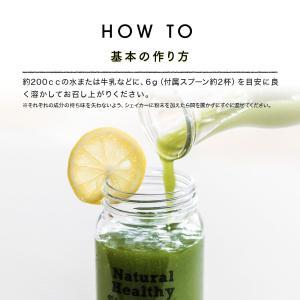 Natural Healthy Standard ミネラル酵素スムージー|queensshop|14