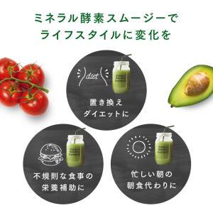 Natural Healthy Standard ミネラル酵素スムージー|queensshop|05