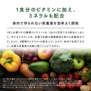 Natural Healthy Standard ミネラル酵素スムージー|queensshop|08