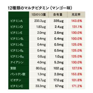 Natural Healthy Standard ミネラル酵素スムージー|queensshop|09