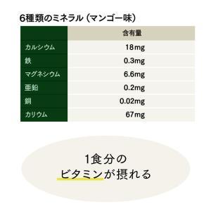 Natural Healthy Standard ミネラル酵素スムージー|queensshop|10