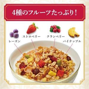 【送料無料】ケロッグ フルーツグラノラ ハーフ 徳用袋 500g×12袋 quickfactory 02