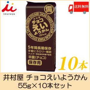 井村屋 チョコえいようかん 55g×10本セット 送料無料 ポイント消化|クイックファクトリー