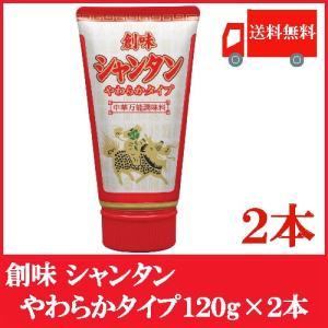 全国送料無料 創味 シャンタン やわらかタイプ 120g ×2本 '(チューブタイプ)