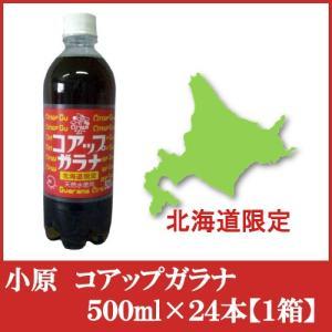 北海道限定 オバラ コアップガラナ500ml×24本(1ケース)【送料640円】