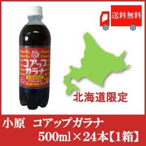 送料無料 北海道限定 オバラ コアップガラナ500ml×24本(1ケース)