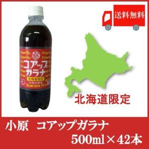 送料無料 北海道限定 オバラ コアップガラナ500ml× 42本