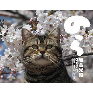 2021猫カレンダー のら (カレンダー) r-ainet