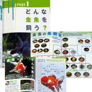 金魚のいる楽しい暮らし ─金魚の飼い方・育て方|r-books