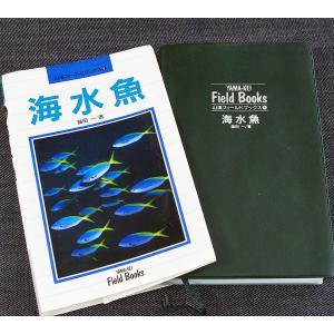 海水魚 ─山渓フィールドブックス|r-books