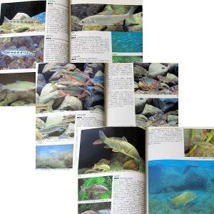 川魚完全飼育ガイド ―日本産淡水魚の魅力満載|r-books|03