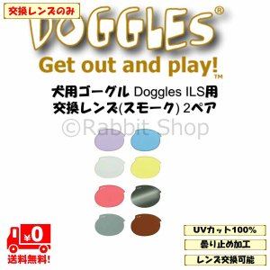 ドグルズ (Doggles) ILS ゴーグル 犬用 交換レンズ 2ペア (ILS2用ではありません!) rabbitshop