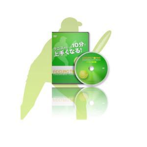 フィーリングテニス オールスポーツ書籍・DVD フィーリングテニスDVD/ダブルス・戦術編...
