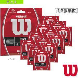 ウィルソン テニスストリング(単張)  『12張単位』WILSON ウィルソン/NATURAL GUT(WRZ999800/WRZ999900)|racket