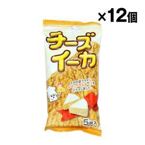 チーズイーカ 5枚入 入数12個 エヌエス 共同食品工業 【条件付き送料無料】|racooldepo