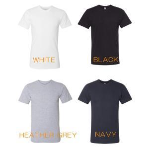 アメリカンアパレル Tシャツ AMERICAN APPARE...